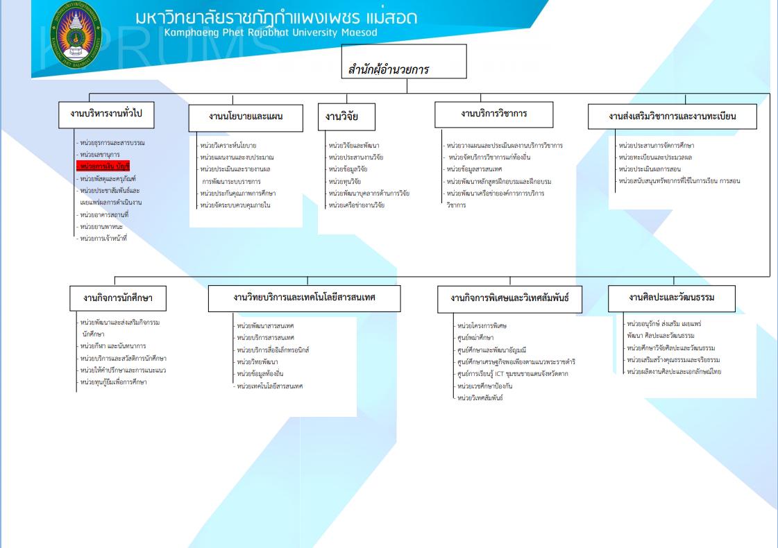 organization-structure-1